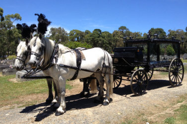 Horse Drawn Hearse